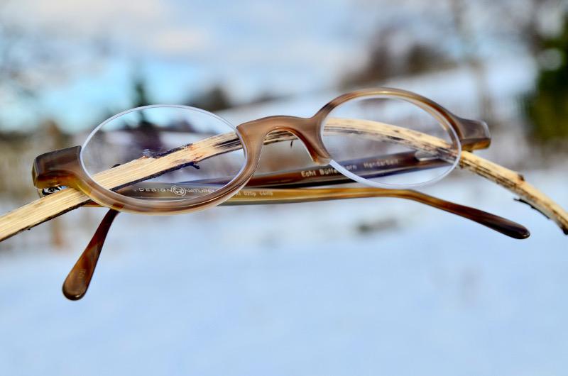 Hornbrille modern
